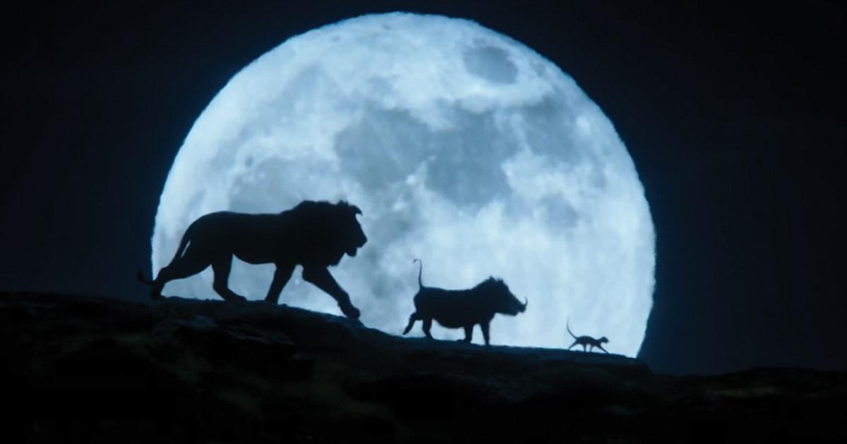 La guardia del leone il ritorno del ruggito